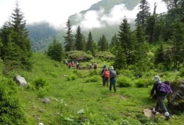 Doğa Turları