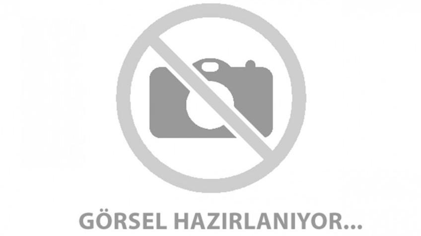 Artvin Yavuz Köyü